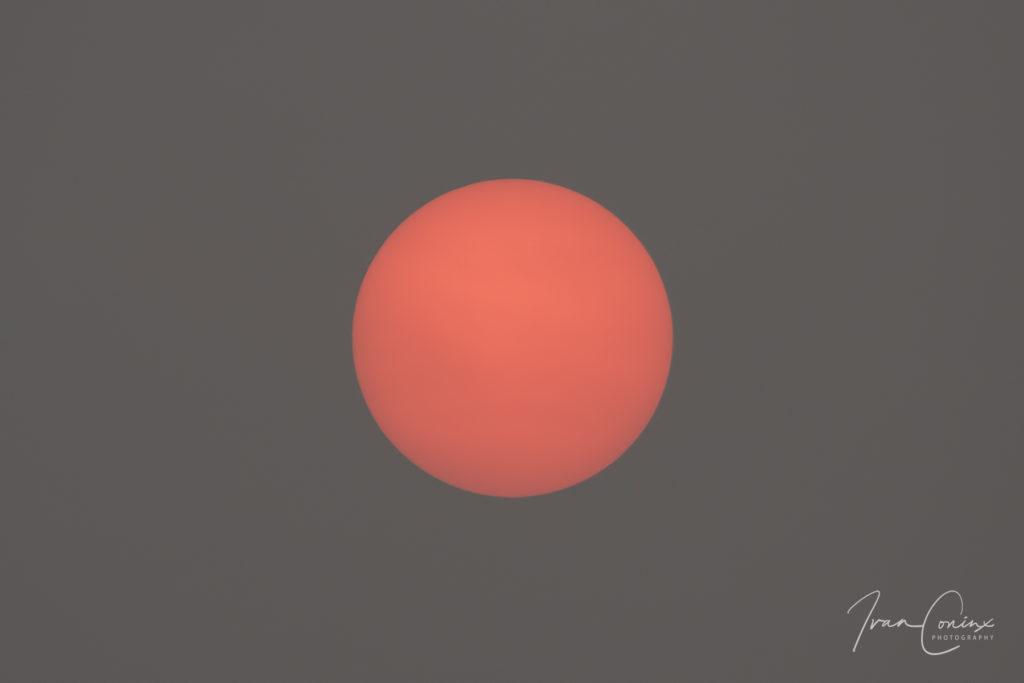 2017-10-17-Sun-01-1024x683.jpg
